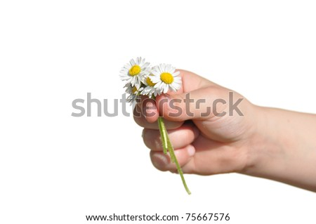 Child presents self picked flowers to parent - stock photo