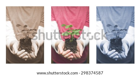 Child's hands holding strawberry baby plant. Triptych - stock photo