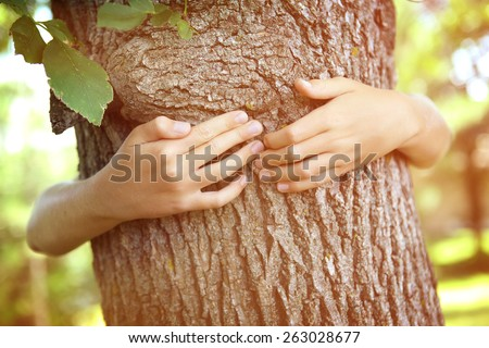 Child's hands hugging a tree.  Instagram effect. - stock photo