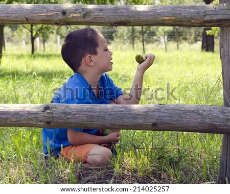 Child sitting in grass behind wooden fence in orchard or garden eating organic pear.   - stock photo