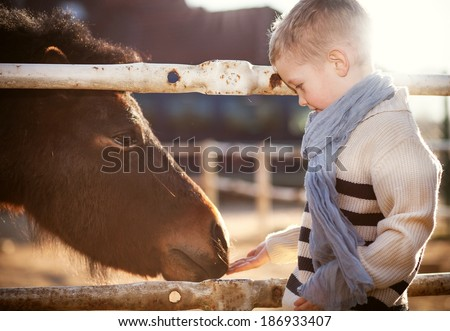 Child with pony in the mini zoo - stock photo