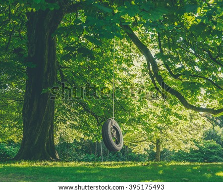 Childhood Nostalgia Image Of a Tire Swing Hanging From A Tree On A Summer's Afternoon - stock photo