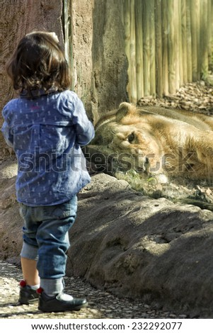 children at the zoo with a lion - stock photo