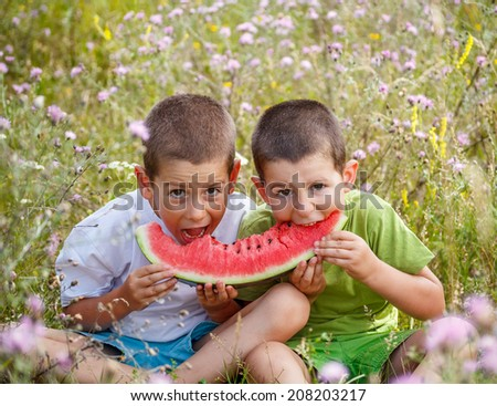 Children eating red watermelon on meadow background - stock photo