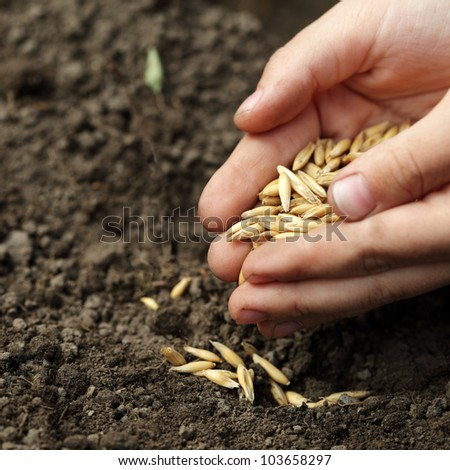 children hand sowing seed - stock photo