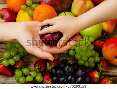 children hand takes the plum from  man's hand. the toning. selective focus - stock photo