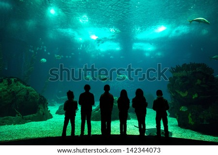 Children in a water park looking at fish through the glass - stock photo