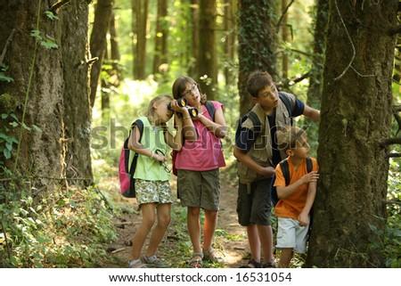 Children looking into woods - stock photo