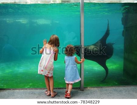 Children near zoo aquarium - stock photo