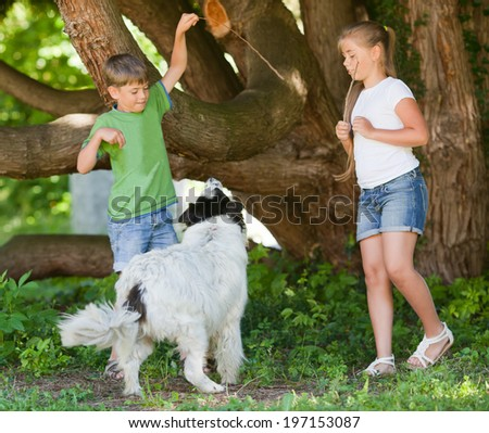 Children playing with dog in a summer garden - stock photo