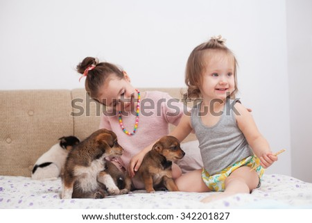 Children playing with dogs from animal shelter - stock photo