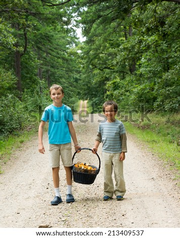 Children stand on the road in the woods and keep a heavy basket with mushrooms - chanterelles - stock photo
