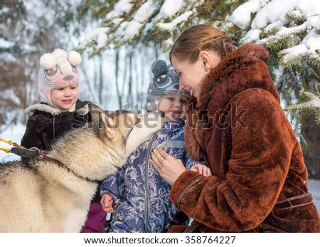 Children with woman and dog breed husky - stock photo