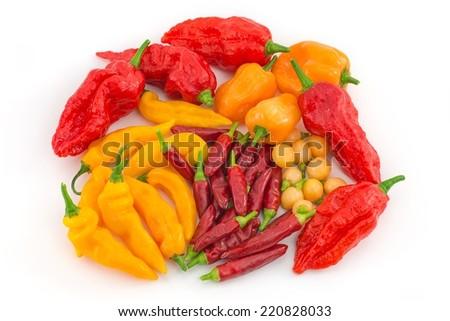 chillies  - stock photo