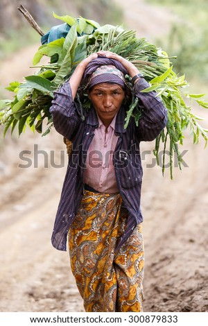 CHIN STATE, MYANMAR - JUNE 22 2015: Lady carries heavy load in the recently opened for tourists Chin State Mountainous Region, Myanmar (Burma) - stock photo