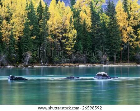 China/xinjiang hiking: Fall colors of the Kanas lake - stock photo