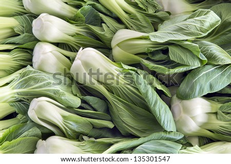 Chinese Cabbage Bok Choy White Vegetables at Wet Market in Southeast Asia - stock photo