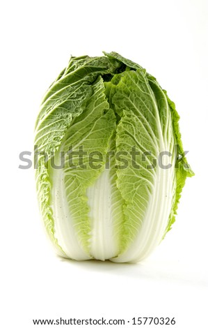 Chinese cabbage on white - stock photo