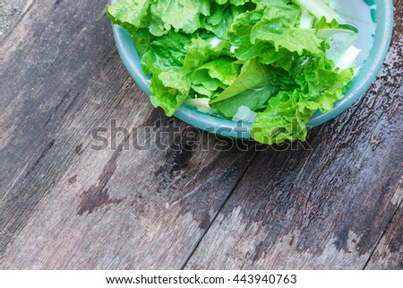 chinese cabbage organic vegetables  Soak water wash sink on the wooden floor background  - stock photo