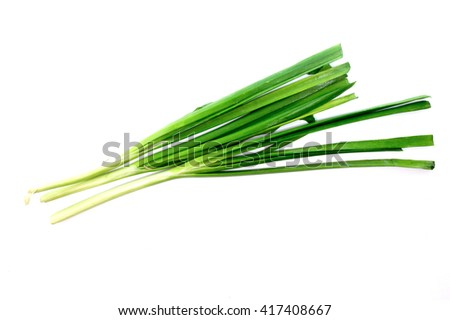 Chinese chives, Garlic chives, Kow Choi - stock photo