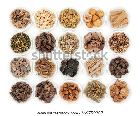 Chinese herbal medicine selection in porcelain dishes  over white background.  - stock photo