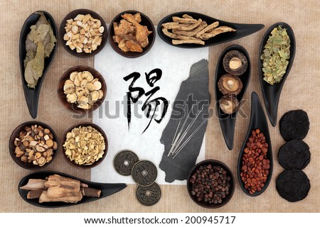 Chinese herbal medicine selection with acupuncture needles, yang symbol and good fortune coins. Script translation reads as yang. - stock photo