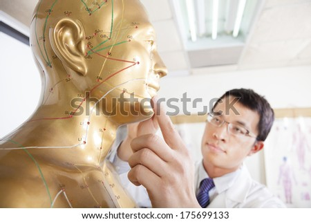 chinese medicine doctor teaching  Acupoint on human model - stock photo