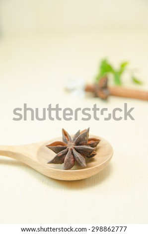 Chinese star anise and cinnamon stick on wood spoon and wood board - stock photo