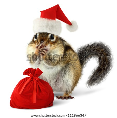 Chipmunk in red Santa Claus hat and bag with gifts on white background - stock photo