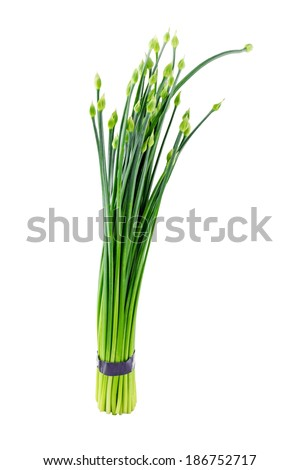 Chives flower or Chinese Chive isolated on white background - stock photo