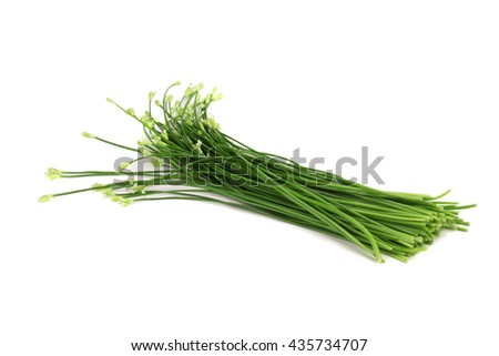 Chives flower or Chinese Chive isolated on white background. - stock photo