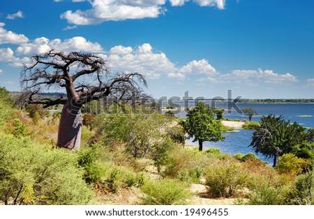 Chobe river in Botswana - stock photo