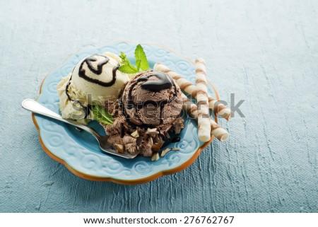 Chocolate and vanilla Ice cream on a plate - stock photo