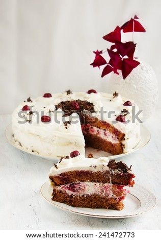 chocolate cake with cherry - Black Forest cake on the white background - stock photo