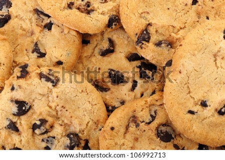 Chocolate chip cookies background.Detailed photo closeup - stock photo