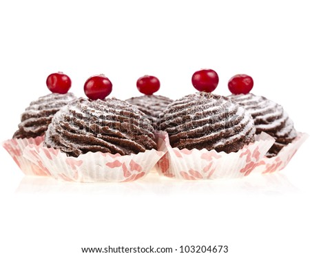 chocolate cupcake with fresh cranberries isolated on a white background - stock photo