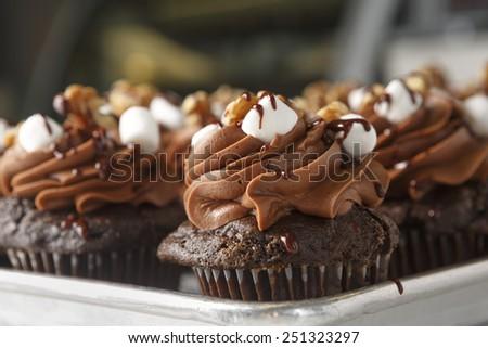 Chocolate Cupcakes - stock photo