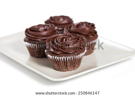 Chocolate cupcakes on a plate on a white background - stock photo