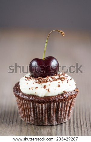 Chocolate Cupcakes with cherries on a plate on wooden background - stock photo