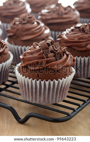 Chocolate cupcakes with chocolate frosting - stock photo