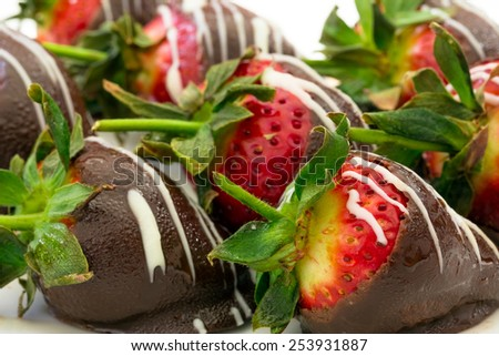 Chocolate dipped strawberries - stock photo
