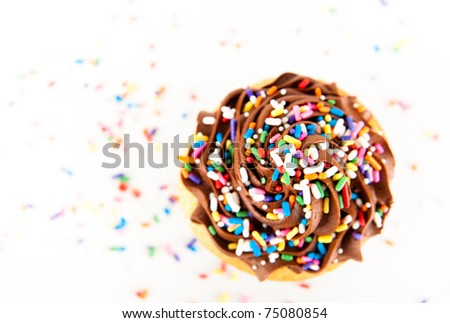 Chocolate Frosting Cupcake with Lots of Sprinkles - stock photo