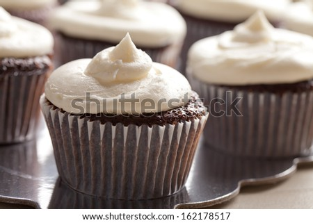 Chocolate gourmet cupcakes with sprinkles and buttercream frosting - stock photo