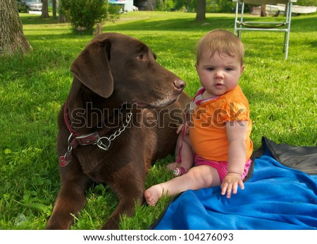 Chocolate Lab sits lovingly next to the little baby girl - stock photo