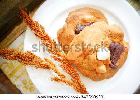 Chocolate macadamia nut cookies for breakfast - stock photo