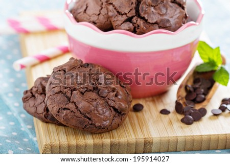 Chocolate meringue cookies in a bowl with chocolate chips - stock photo