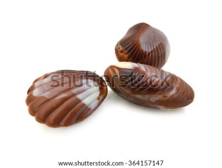 Chocolate seashells isolated on white - stock photo