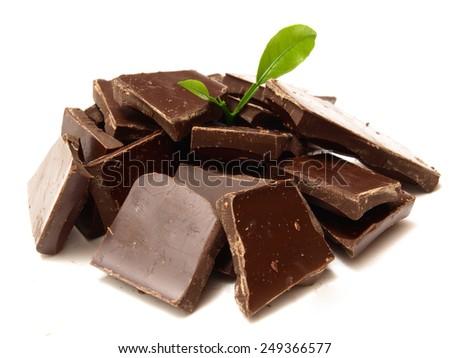 Chocolate tree     - stock photo