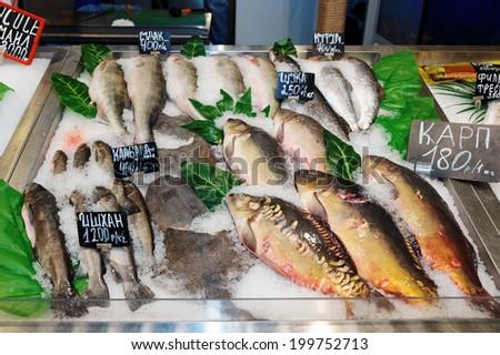 Choice of fish on market display - stock photo