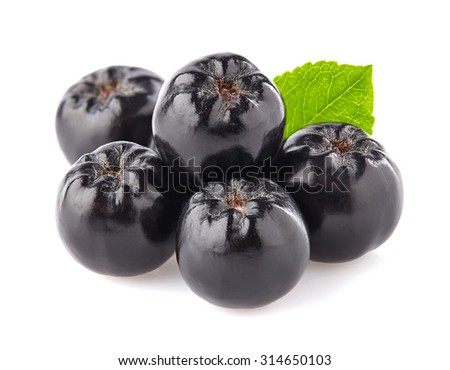 Chokeberry in closeup - stock photo